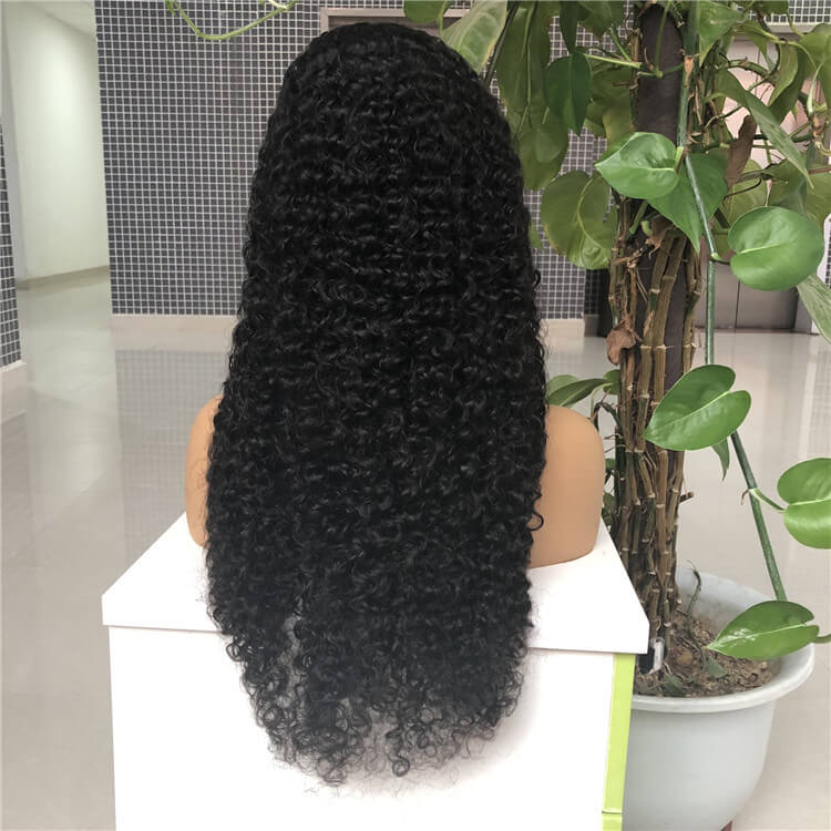 HD Lace Curly Wave Wig
