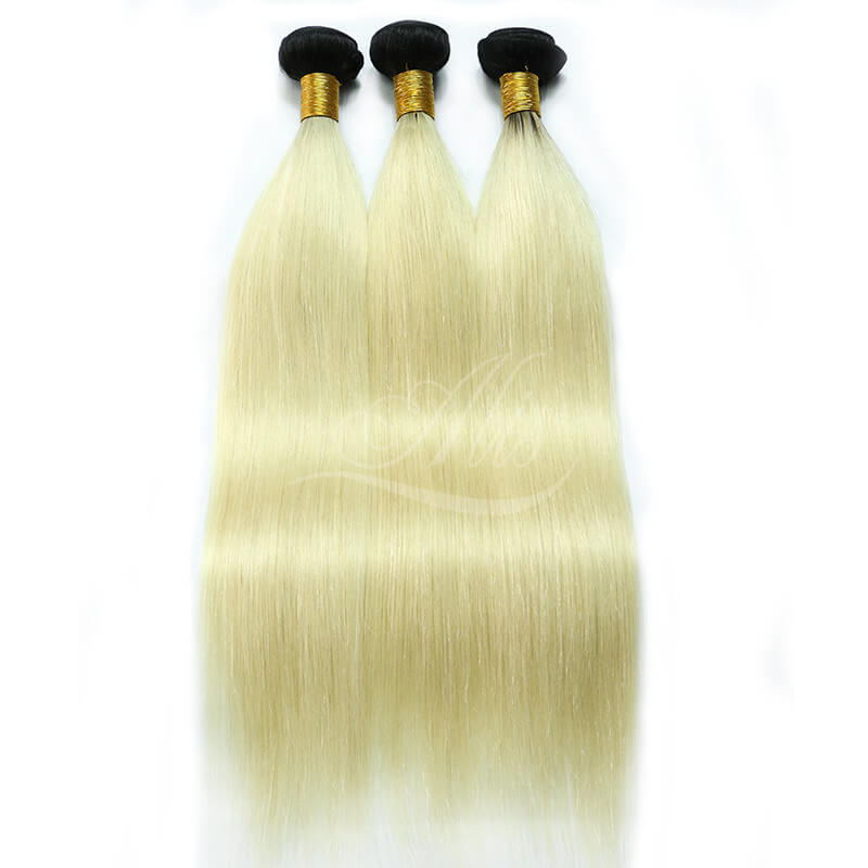 Light Blonde Ombre Hair Brazilian Straight 1B/613